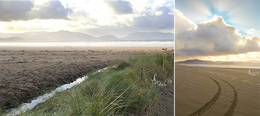 St. Louis Photographer - Inch Beach, Dingle Peninsula