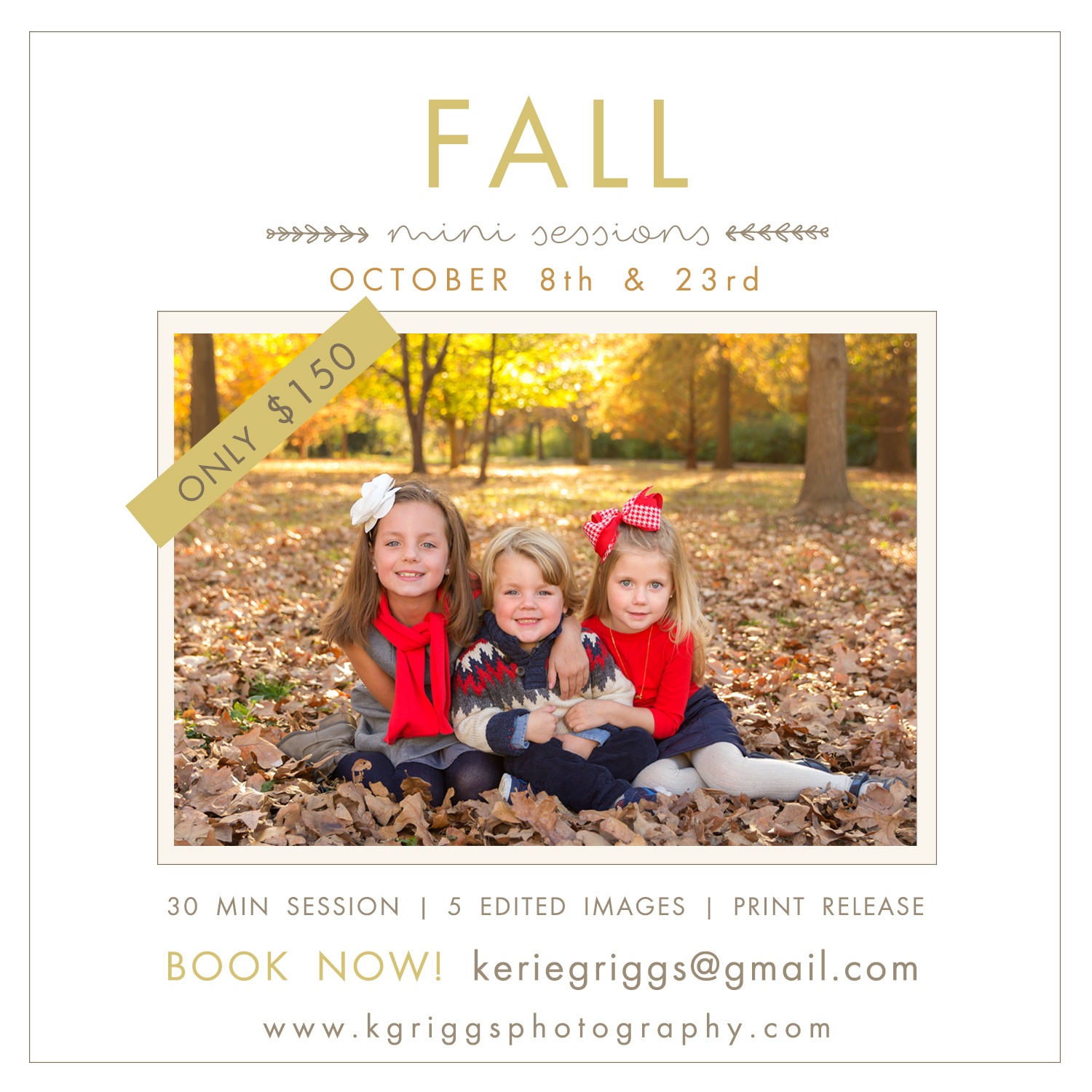 Information Flyer for Fall Mini Sessions | St. Louis Photographer